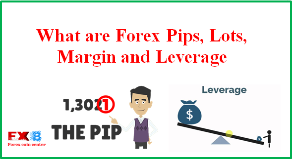 Pips and lots forex