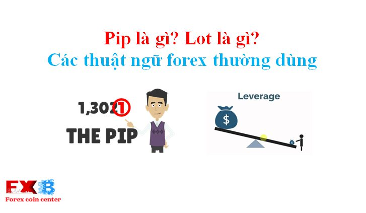 Co je to pip forex