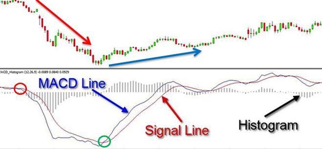 Cách dùng đường MACD cắt đường signal