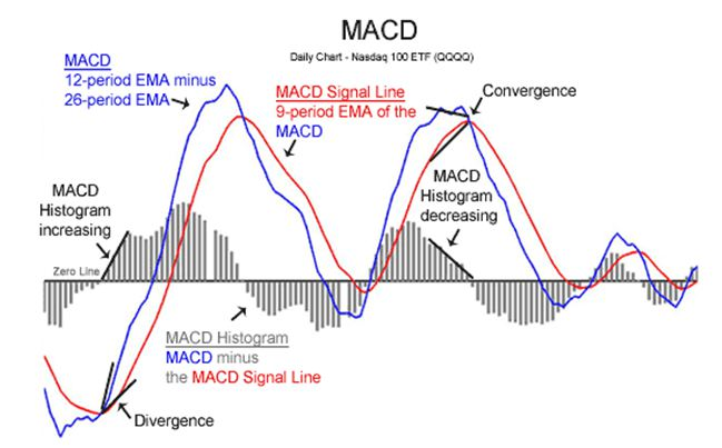 Thành phần chỉ báo MACD