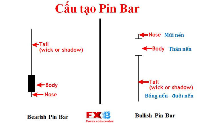 Cấu tạo Pin Bar