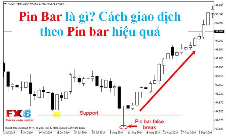 Pin Bar là gì và Cách giao dịch theo Pin bar hiệu quả
